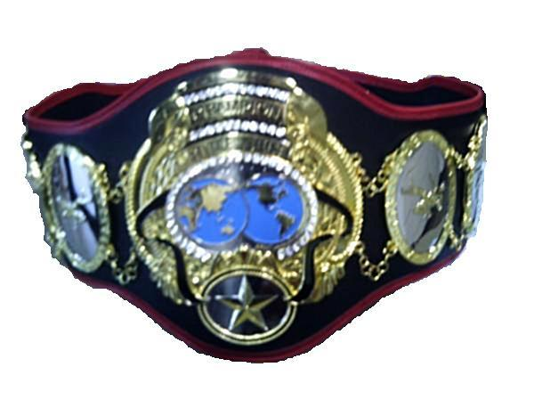 The DWA Internet Title Belt